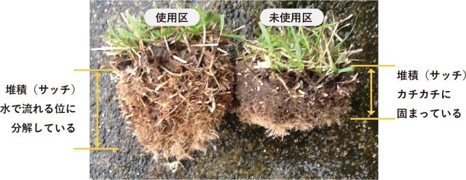 サッチ分解 肥料