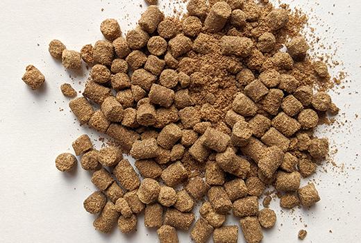 有機アミノ酸肥料