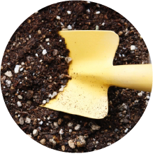 肥料の適量